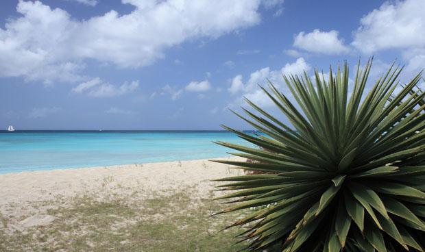 Sandstrand Barbados