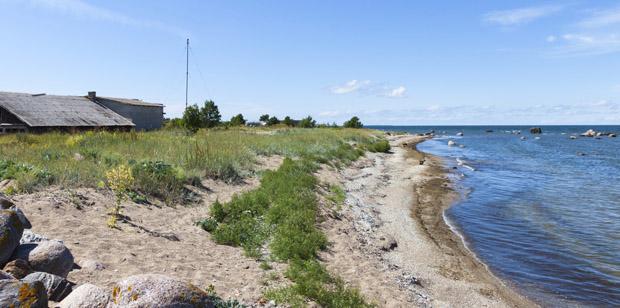 Baltiske hav - Estland