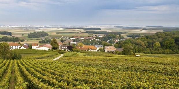 Frankrig - Vinmarker