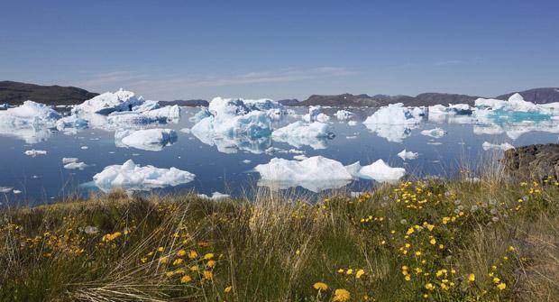 Narsaq - Grønland
