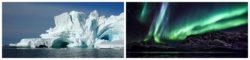 The Big Arctic Five